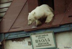 Россия. Школьный будни. 25.jpg