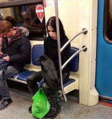 Высокая мода из русского метро.JPG