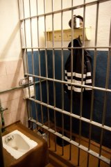 Существа, непригодные для перевоспитания. Тюрьма Полярная Сова 7.jpg