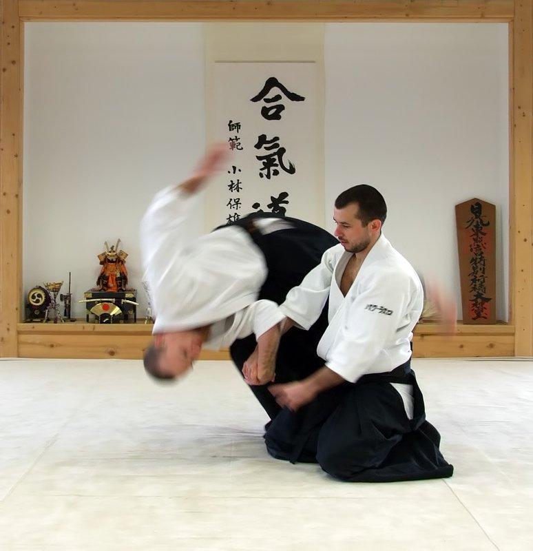 large.936826222_Aikido-Rospersonal.jpg.6