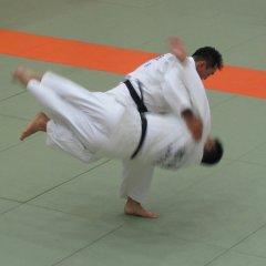 Judo, Rospersonal.jpg