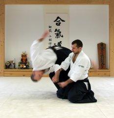 Aikido - Rospersonal.jpg