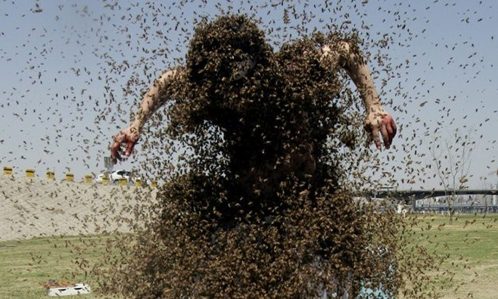 McAllen Air Branch of Air and Marine Operations rescued a Border Patrol agent after he was attacked by bees and stung hundreds of times.jpg