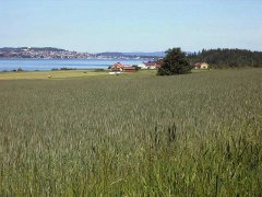 The-best-prison-bastoy-prison-Norway 19.jpg