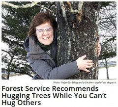 The Ministry of the Environment of Iceland advises residents of the country to hug trees while the social distance regime is in effect.jpg