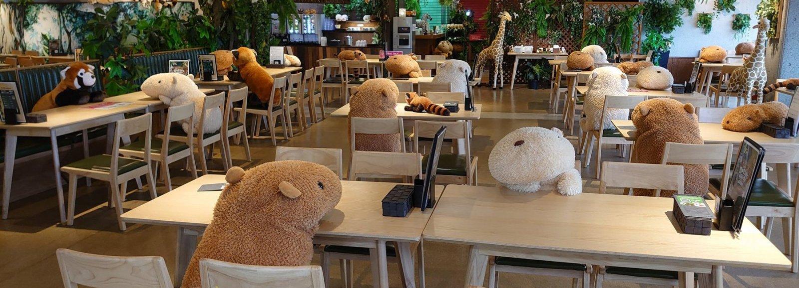large.japanese-zoo-stuffed-animal-capyba