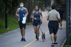 people jogging with their pets and out for a walk along Clementi Park Connector-immigration-job-rospersonal-Mikhaylov-Evgeny-Matveevich-Immigration-Agent-Moscow.jpg
