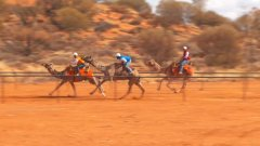 Uluru Camel Cup races in Central Australia-immigration-job-rospersonal-Mikhaylov-Evgeny-Matveevich-Immigration-Agent-Moscow.jpeg