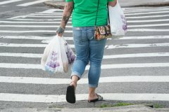 New York State will start fines for plastic bags.jpg