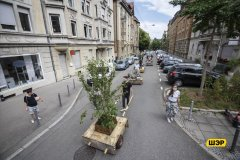 In Stuttgart, they came up with a new version of landscaping - 10 %22mobile%22 trees in tubs-visa-news-rospersonal-Mikhaylov-Evgeny-Matveevich-Immigration-Agent-Moscow.jpg