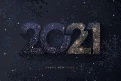 Happy COVID X-mas & New year 2021, с наступающим! 9.jpeg