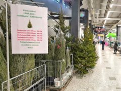 Christmas-trees-Finland-visa-news-rospersonal-Mikhaylov-Evgeny-Matveevich-Immigration-Agent-Moscow 2.jpg