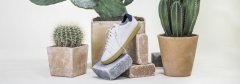 CLAE launches-vegan cactus leather sneakers-visa-news-rospersonal-Mikhaylov-Evgeny-Matveevich-Immigration-Agent-Moscow .jpg