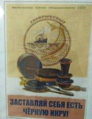 -visa-news-rospersonal-Mikhaylov-Evgeny-Matveevich-Immigration-Agent-Moscow_12.jpg