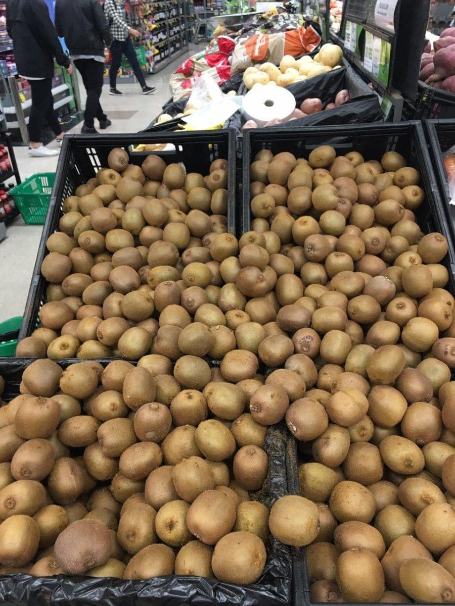 large.229485924_freefruitsforchildrenwhi
