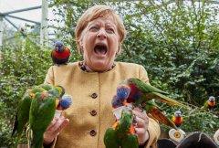 Angela Merkel's last week as chancellor_parot--visa-news-rospersonal-Mikhaylov-Evgeny-Matveevich-Immigration-Agent-Moscow.jpg